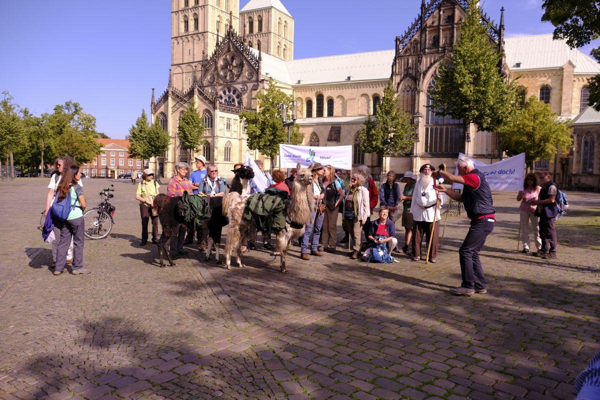 """""""Der Mensch ist mehr als produzieren und konsumieren"""": 30 Klimapilger starten in Münster"""