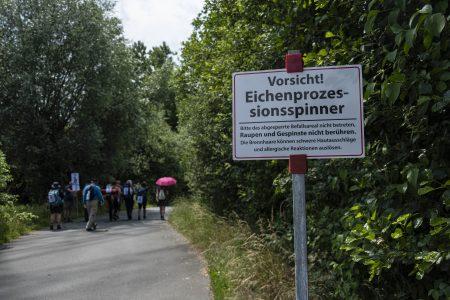 Weiter trotz Hitze und Eichen-Prozessionsspinner: Klimapilger auf dem Weg nach Bonn