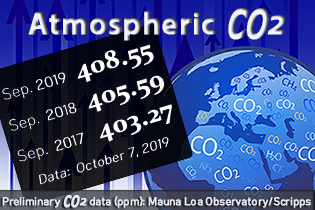CO2 Webseite der Erde