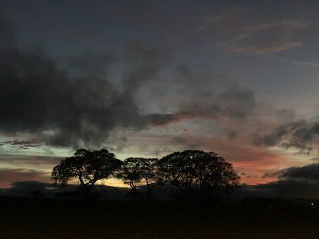 Tagebucheintrag aus Berwick-upon-Tweed
